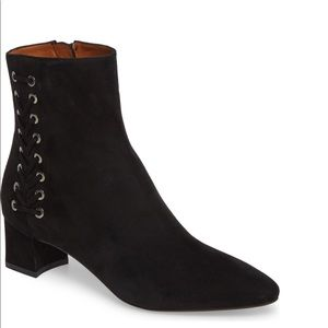 AQUATALIA brown suede ankle boots